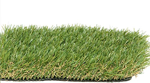 PZG Premium Artificial Grass Patch w/ Drainage Holes & Rubber Backing | 4-Tone Realistic Synthetic Grass Mat | 1.6-inch Blade Height |Extra-Heavy & Soft Pet Turf | Lead-Free Fake Grass for Dogs or Outdoor Decor | Size: 5' x 3.3' by Zen Garden