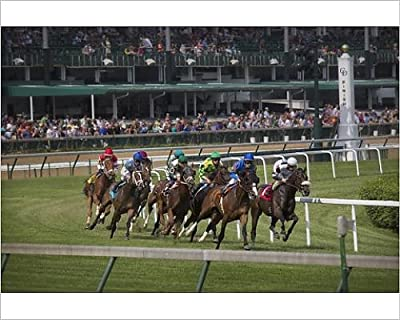 Photographic Print of USA, Kentucky, Louisville. Horses racing on turf at Churchill Downs