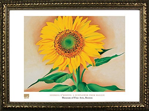 Framed A Sunflower from Maggie by Georgia O'Keefe 24x32 Art Print Poster Floral Famous Painting from Museum of Fine Arts Boston ()