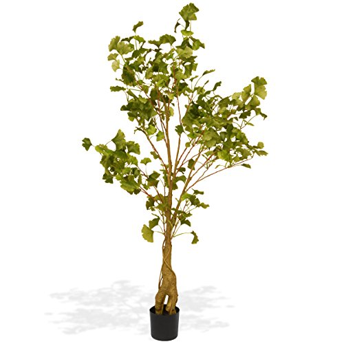 National Tree 4.2 Foot Ginkgo Potted Tree (RAS-FY311P5-1)