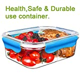 SELEWARE 2-Compartment Tritan Plastic Stackable Food Storage Container with Snaps Locking Lid, BPA-Free - Best Reviews Guide
