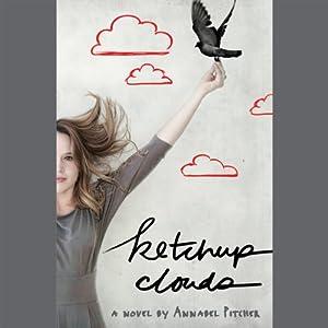 Ketchup Clouds Audiobook