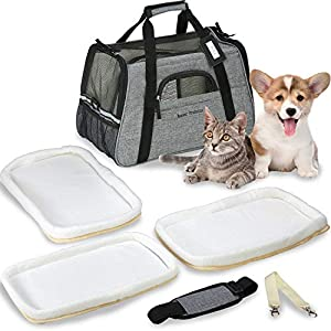 Besser Products Airline Approved Pet Carrier – Soft Sided Dog Travel Bag for Men and Women with 3 Bonus Fleece Pads – for Small Dogs and Cats – Charcoal Grey (Grey)