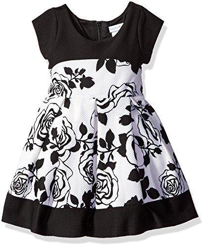 Sweet Heart Rose Paneled Fashion product image