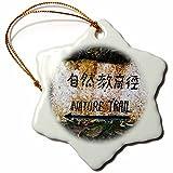 3dRose Danita Delimont - Signs - Hong Kong, Tai Po Kau Nature park trail marker. - 3 inch Snowflake Porcelain Ornament (orn_225589_1)