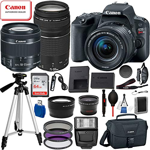 Canon EOS Rebel SL2 DSLR Camera, EF-S 18-55mm STM, Canon EF 75-300mm Telephoto Lens USA (Black) 19PC Professional Bundle Package Deal –SanDisk 64gb SD Card + Canon Shoulder Bag+ More
