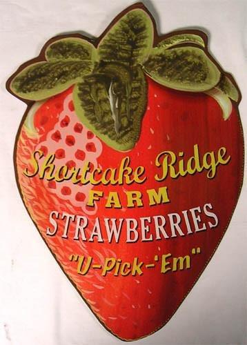 (American Collectibles Shortcake Ridge Farm Strawberries You Pick Them Vintage Style Plasma Cut Metal Sign)