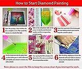 5D Diamond Art Kits for Adults, Diamond Painting