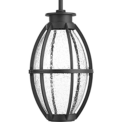 Progress Lighting P550010-031-30 Pier 33 Collection One-Light LED Hanging Lantern, Black