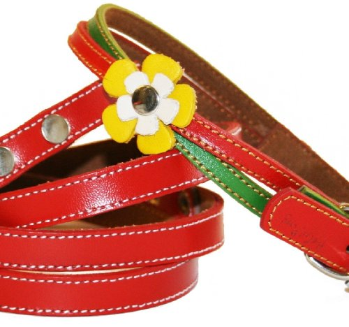 The Cool Puppy Swirls Leather Dog Collar and Leash Set - Red Rasta Small (8-10 inches)