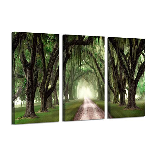 Oak Tree Canvas Painting Prints: Forest Artwork Landscape Path Picture Wall Art on Wrapped Canvas for Living Room (26'' x 16'' x 3 Panels) (Path Wall)