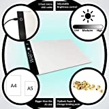 Flip Book Kit with Light Pad for