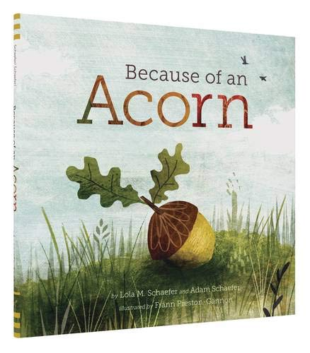 - Because of an Acorn