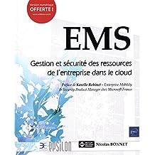 EMS : Gestion et sécurité des ressources de l'entreprise dans le