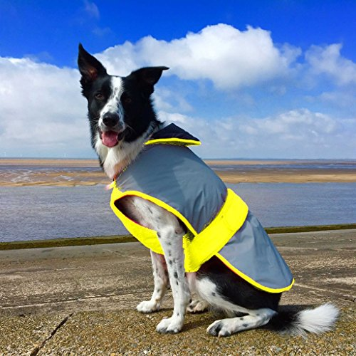 Weatherbeeta Equisafety Mercury Dog Coat Large Yellow For Sale