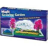 Cristal grandissant magique jardin