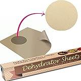 Baking Mat Teflon Dehydrator Sheet - Set Of 9