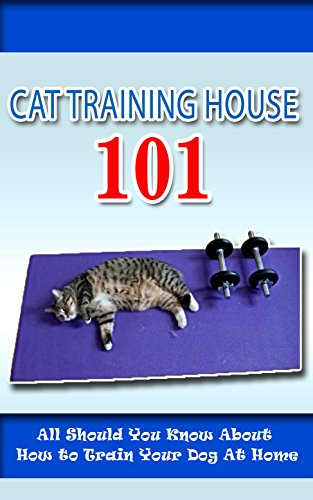 Cat Training House 101: All Should You Know About How to Train Your Dog At Home