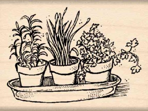 Stamps by Impression Herbs Rubber Stamp (Stamp Basil)
