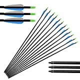 Huntingdoor 12PCS 32' Fiberglass Target/Hunting Arrows with Replacement Screw-In Target Practice Point for Recurve and Compound Bow High Strength and Durable Special Recommendation 3 Colors Availabl
