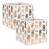 DII Foldable Fabric Storage Containers (11x11x11) Pineapple Set of 2, Small (2), White/Gold