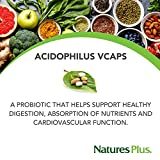 NaturesPlus Acidophilus - 40 Million CFU