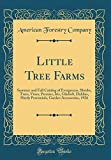 Amazon / Forgotten Books: Little Tree Farms Summer and Fall Catalog of Evergreens, Shrubs, Trees, Vines, Peonies, Iris, Gladioli, Dahlias, Hardy Perennials, Garden Accessories, 1926 Classic Reprint (American Forestry Company)