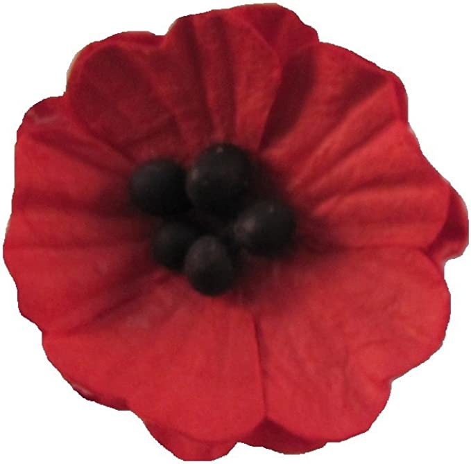 Three sizes sold per ONE  button Black Poppy buttons Beautiful Red