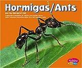 Hormigas, Margaret C. Hall, 0736866825