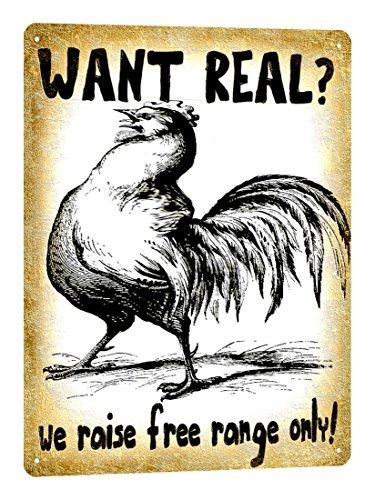 Organic Free Range Eggs - 4
