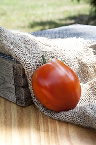 Amish Paste Sauce Heirloom Tomato Premium Seed Packet (Amish Paste Tomato Seeds)