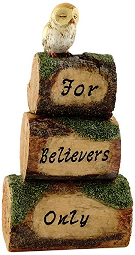 Top Collection Miniature Fairy Garden and Terrarium Statue, for Believers Only Mini Wood Cairn with -