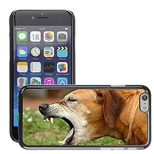 "Print Motif Coque de protection Case Cover // V00002664 la tos de perro // Apple iPhone 6 6S 6G 4.7"""