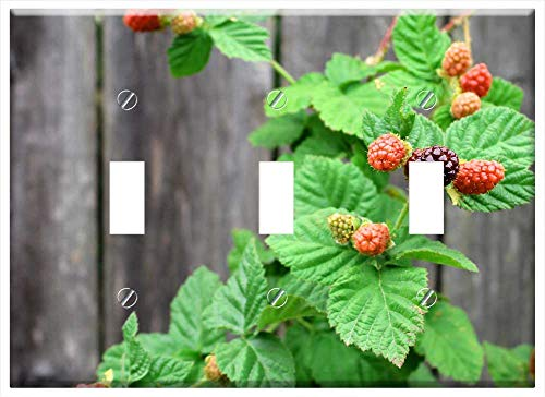 Switch Plate Triple Toggle - Berries Boysenberry Nature Harvest Fruit Berry