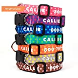 Buttonsmith Custom Personalized Dots Dog Collar - Fadeproof Permanently Bonded Printing Process, Military Grade Rustproof Buckle, Resistant to Odors & Mildew, Choice of 5 Sizes, 100% Made in USA