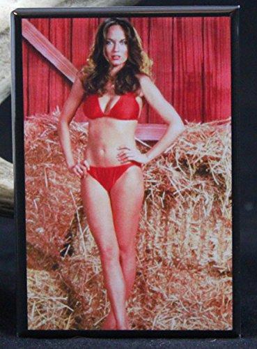 Sexy Daisy Duke Photo - Refrigerator Magnet. Dukes of Hazzard