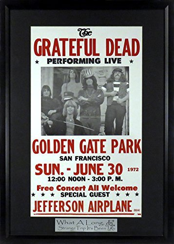 Vintage Collectible Dancing Glass - The Grateful Dead @ Golden Gate Park Concert Poster with Floating Plate (Framed)
