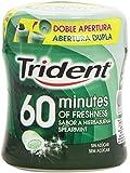 Trident - Chicle Hierbabuena sin Azúcar - 80g
