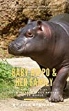 The Baby Hippo and Family: Photo Book of Cute