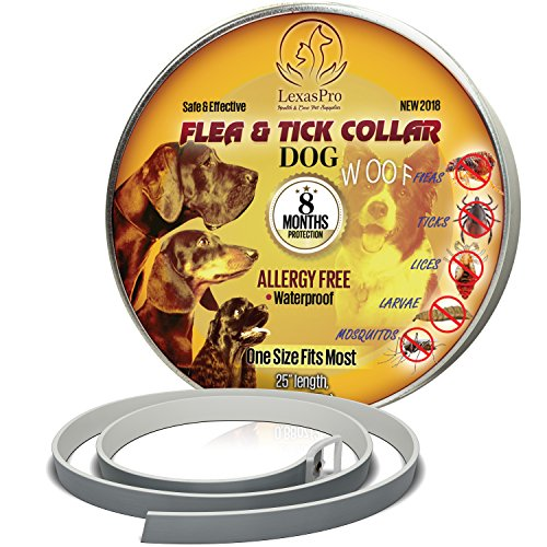 Flea & Tick Collar for Dogs by LexasPro: 8-MONTHS Guaranteed. Hypoallergenic Adjustable Waterproof protection from 500 species of insects. One Size Fits ALL! Enhanced with Natural Plant Extracts.