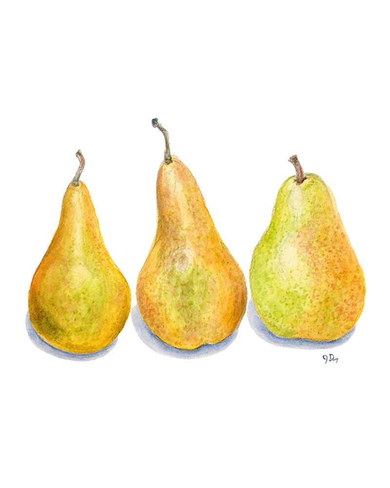 Amazon.com: Fruit Art Vegetable Prints Set of 6, Kitchen Wall Art ...