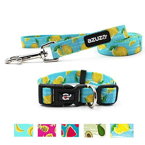 - azuza Dog Collar and Leash Set, Adjustable Nylon Collar with Matching Leash, Lemon Parttern for Large Dogs