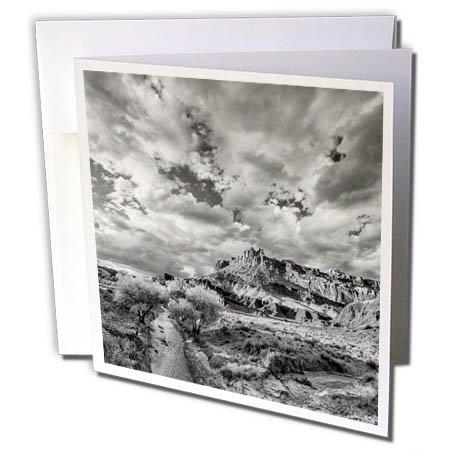 3dRose Danita Delimont - Utah - Black and White Landscape Below The Castle, Capitol Reef NP, Utah - 6 Greeting Cards with envelopes (gc_260260_1)