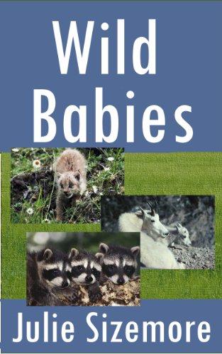 Wild Babies (Nature Kids)