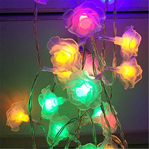 Lumineux Outdoor Lighting in US - 6