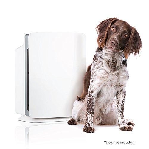 Alen BreatheSmart Classic Fur Family SmartBundle with Allergen-Reducing Air Purifier & Two HEPA Filters for Pet Odor, 1100 SqFt; White