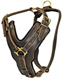 Dean and Tyler The Victory Solid Brass Hardware Dog Harness, Brown, Large - Fits Girth Size: 31-Inch to 41-Inch