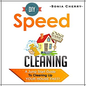 DIY Speed Cleaning Audiobook