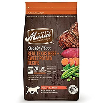 Top Dry Dog Food