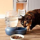 Petmate Replendish Gravity Waterer with Microban